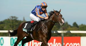 BATTLE-HARDENED: 'Tough warrior' Battle Of Marengo is taking the tried and tested route to Epsom
