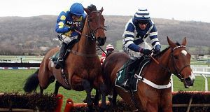 Oscar Whisky (right) looks good value at 4/1 in World Hurdle.