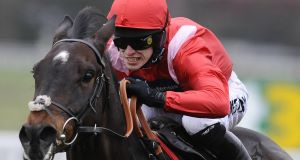 REBEL WITH A CAUSE: Rebel Rebellion should be suited by the track in the novice chase at Sandown today. Picture: Getty